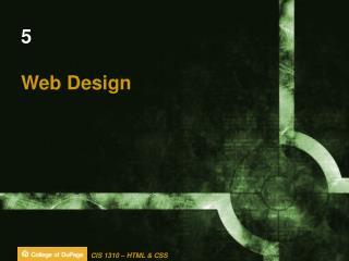 5 Web Design
