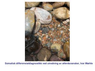 Somatisk differensialdiagnostikk ved utredning av atferdsvansker, Ivar Mæhle