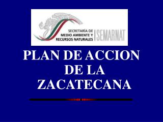 PLAN DE ACCION DE LA ZACATECANA