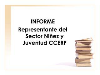 INFORME Representante del Sector Ni�ez y Juventud CCERP