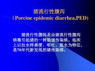猪流行性腹泻 ( Porcine epidemic diarrhea,PED)