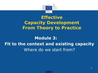 Effective  Capacity Development From Theory to Practice