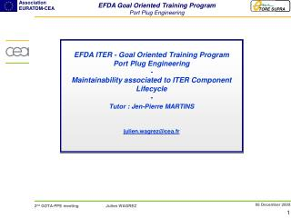 EFDA Goal Oriented Training Program Port Plug Engineering