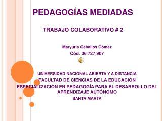 PEDAGOGÍAS MEDIADAS TRABAJO COLABORATIVO # 2