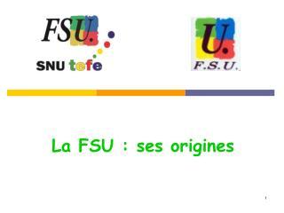 La FSU : ses origines