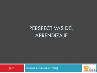 Perspectivas del aprendizaje