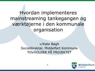 Hvordan implementeres mainstreaming tankegangen og værktøjerne i den kommunale organisation