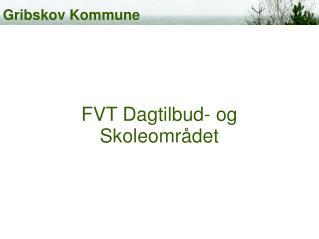 FVT Dagtilbud- og Skoleområdet