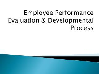 Employee Performance Evaluation & Developmental Process