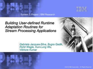 Building User-defined Runtime  Adaptation Routines for Stream Processing Applications