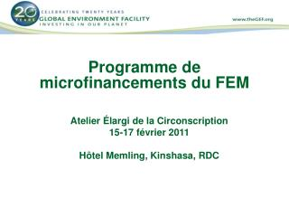 Programme de microfinancements du FEM