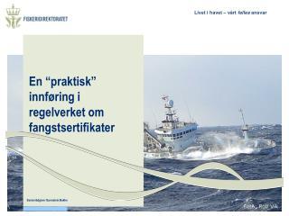 """En """"praktisk"""" innføring i regelverket om fangstsertifikater"""