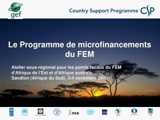 Le Programme de microfinancements du FEM