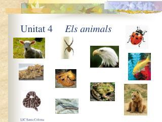 Unitat 4      Els animals