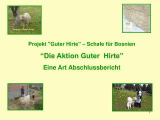 """Projekt """"Guter Hirte"""" – Schafe für Bosnien """"Die Aktion Guter  Hirte"""" Eine Art  Abschlussbericht"""