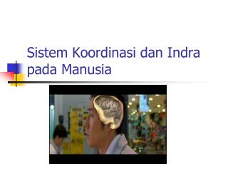 Sistem Koordinasi dan Indra pada Manusia