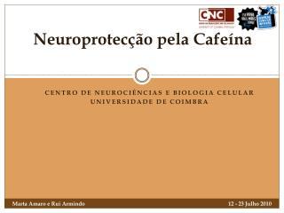 Neuroprotecção pela Cafeína