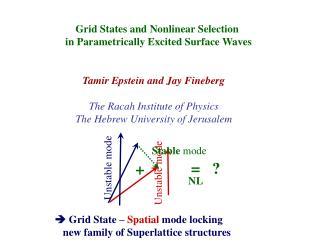 Grid States and Nonlinear Selection  in Parametrically Excited Surface Waves