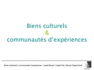 Biens culturels & communautés d'expériences