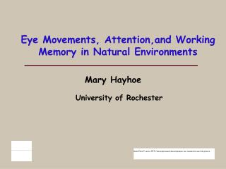Eye Movements, Attention,and Working Memory in Natural Environments