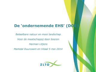 De 'ondernemende EHS' (DOE)