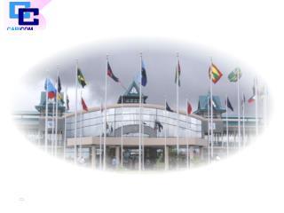 Ninth EDF Project   Caribbean Integration Support Programme CISP  Statistics Component