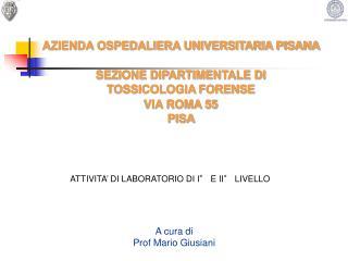 A cura di Prof Mario Giusiani