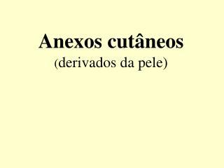 Anexos cutâneos ( derivados da pele)