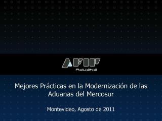 Mejores Prácticas en la Modernización de las Aduanas del Mercosur Montevideo, Agosto de 2011
