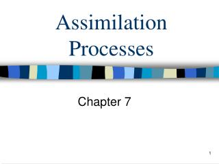 Assimilation Processes