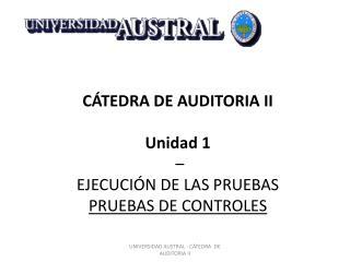 CÁTEDRA DE AUDITORIA II Unidad  1  –  EJECUCIÓN DE LAS PRUEBAS PRUEBAS DE CONTROLES