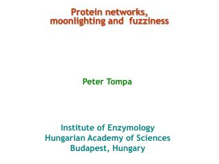 Protein networks, moonlighting and  fuzziness