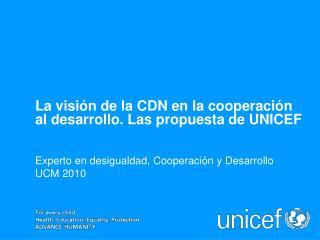 Experto en desigualdad, Cooperación y Desarrollo UCM 2010