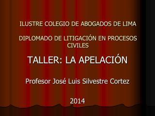 ILUSTRE COLEGIO DE ABOGADOS DE LIMA DIPLOMADO DE LITIGACIÓN EN PROCESOS CIVILES