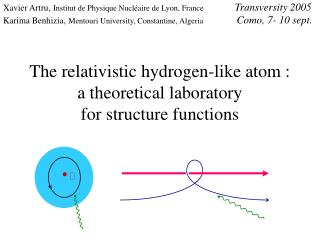 The relativistic hydrogen-like atom : a theoretical laboratory  for structure functions