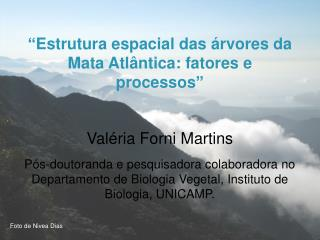 """"""" Estrutura espacial das árvores da Mata Atlântica: fatores e processos """" Valéria Forni Martins"""