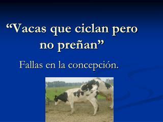 """""""Vacas que ciclan pero no preñan"""""""