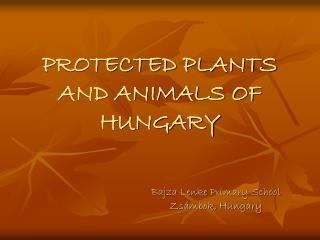 PROTECTED PLANTS AND ANIMALS OF HUNGARY