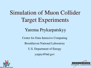 Simulation of Muon Collider Target Experiments