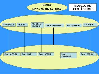 Gestão      MCT – EMBRAPA - MMA