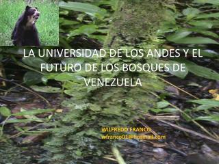 LA UNIVERSIDAD DE LOS ANDES Y EL FUTURO DE LOS BOSQUES DE VENEZUELA