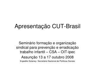 Apresentação CUT-Brasil