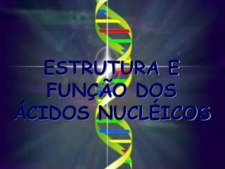 ESTRUTURA E FUNÇÃO DOS ÁCIDOS NUCLÉICOS