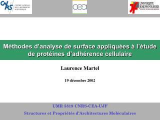 Méthodes d'analyse de surface appliquées à l'étude de protéines d'adhérence cellulaire