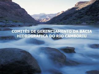 COMITÊS DE GERENCIAMENTO DA BACIA HIDROGRÁFICA DO RIO CAMBORIU
