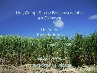 Una Compañía de Biocombustibles en Okinawa