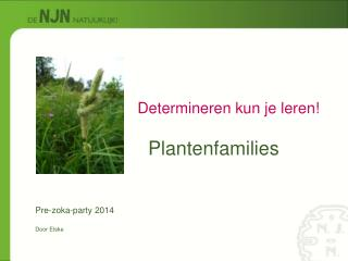 Plantenfamilies