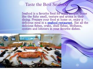 Taste the Best Seafood