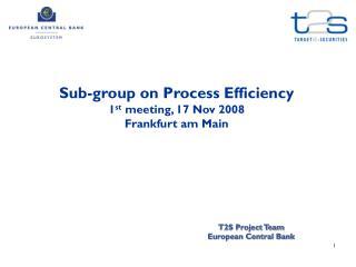 Sub-group on Process Efficiency 1 st  meeting, 17 Nov 2008 Frankfurt am Main