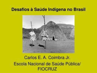 Desafios � Sa�de Ind�gena no Brasil